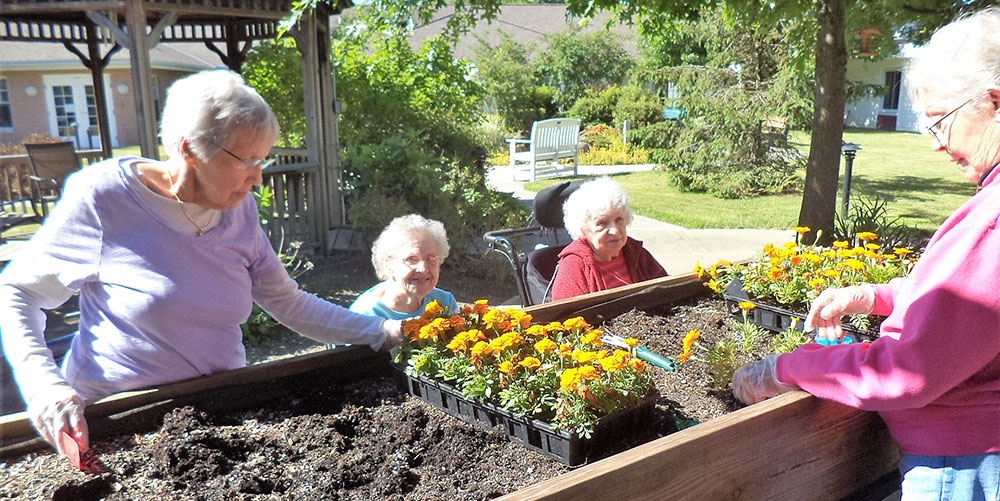 gardening at Avon Oaks